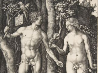 'Adam and Eve', 1504