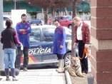 Capturan un tigre escapado de un circo en Andújar