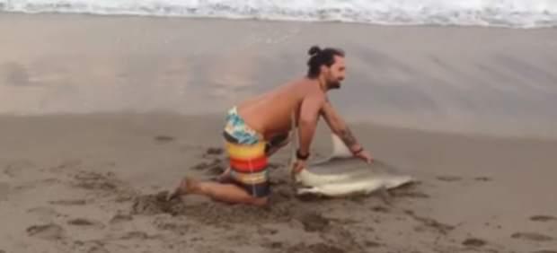 Un bañista saca un tiburón del agua para hacerse una foto con él en una playa de Florida
