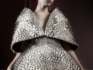 Anthazoa cape and skirt, Voltage Collection (detail), 2013, Designed by Iris van Herpen and Neri Oxman; printed by Stratasys