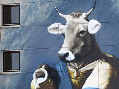 Cataluña aprueba el decreto de venta directa de leche cruda de vaca
