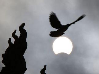 Volando hacia el eclipse