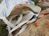 Encuentran perros muertos en una escombrera
