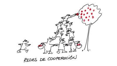 Redes de coorperación