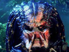 'Depredador' (1987)