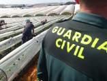 Agente de la Guardia Civil, en el dispositivo de la campaña fresera.