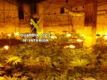 Laboratorio de marihuana desmantelado