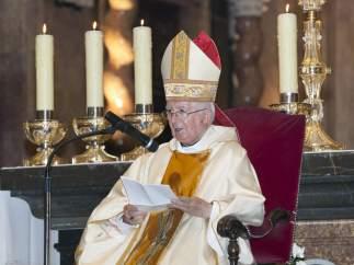 El cardenal Cañizares