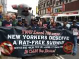 Protestas por ratas