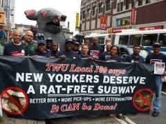 Alarma por ratas en Nueva York