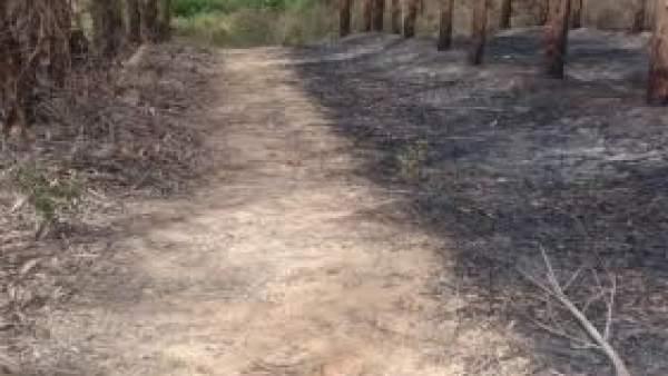Incendio en Fuente de la Corcha, en Beas (Huelva).