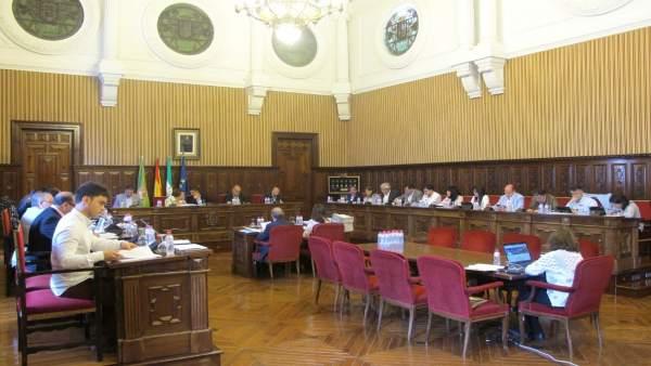 Pleno ordinario de mayo de la Diputación de Jaén.