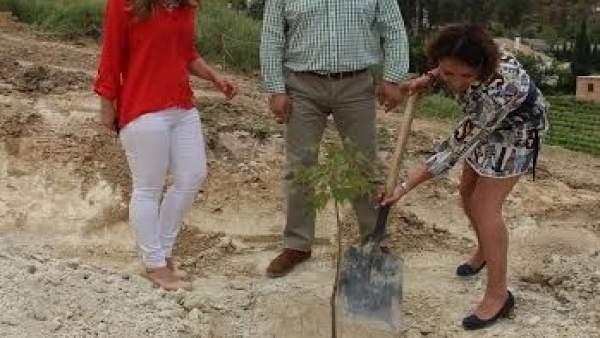 Pozuelo (dcha.) planta un árbol junto a García y Guijarro