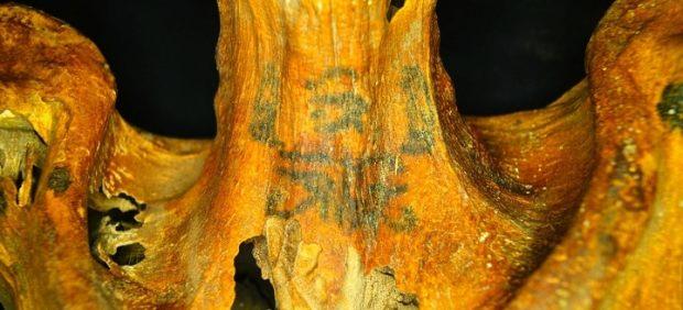 Confirman que los 30 tatuajes de una momia de 3.000 años son los más elaborados hallados hasta ...