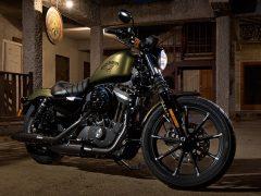 Harley-Davidson 883 TM