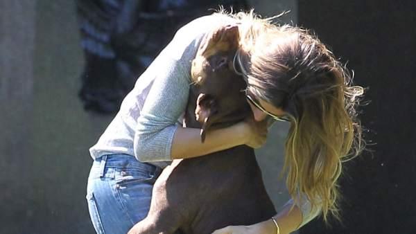 Abrazar a la mascota