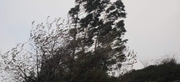 Cinco provincias en alerta este sábado por viento y oleaje y lloverá en buena parte del país