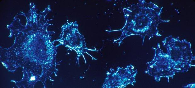 Células enfermas
