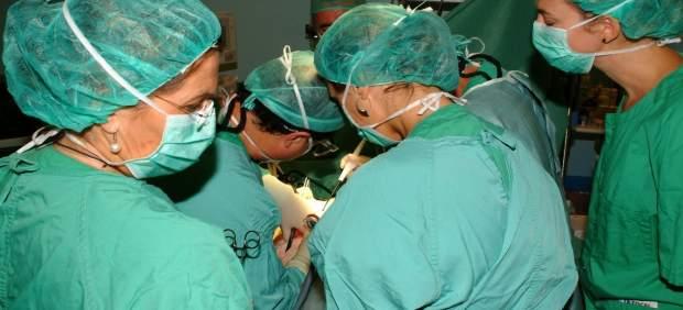 España, país líder en trasplante de órganos desde hace 24 años