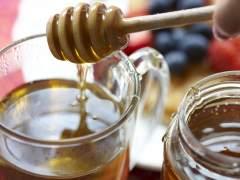 La miel, una máquina de matar bacterias en nuestro organismo