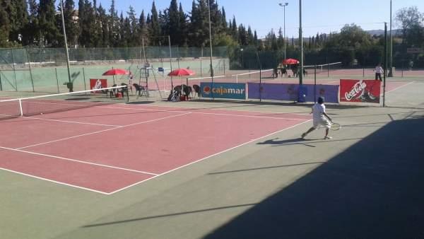 El Torneo de Tenis de Albox ha contado con una alta participación y nivel.