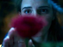 Emma Watson dijo sí al papel de Bella por ser un mejor ejemplo que La Cenicienta