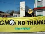 Campaña contra los transgénicos, de Greenpeace- Monsanto