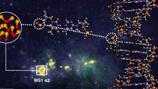 Molécula PO