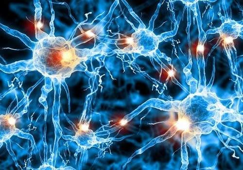 Conexiones neuronales en el cerebro.