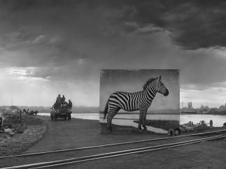 Nick Brandt - Road to Factory with Zebra 2014