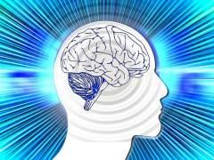 ¿Cómo actúa nuestro cerebro ante una situación en la que peligra la vida?
