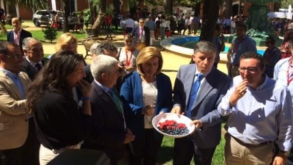 Fátima Báñez prueba los frutos rojos