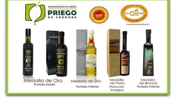 Aceites premiados en la 'Olive Oil Competition'