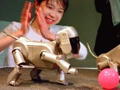 """Sony apuesta por desarrollar robots """"capaces de llegar al corazón"""""""