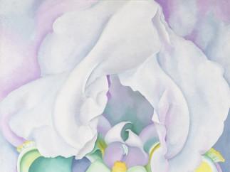 Georgia O'Keeffe 1887-1986 - White Iris 1930
