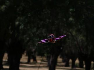Dron de carreras, en 'Free Style'