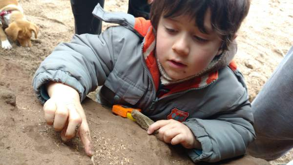 Niño, argentina, restos fósiles