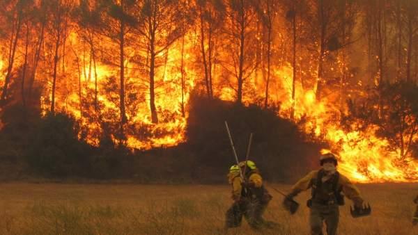 Actuación de extinción de incendio forestal en 2013