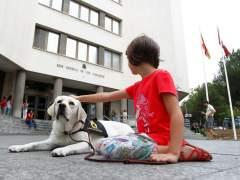 Cómo puede un perro ayudar a juzgar un caso de abuso sexual a menores