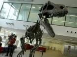 Gualicho, el dinosaurio argentino de la patagonia