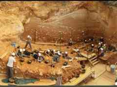Atapuerca, Excavación en Gran Dolina