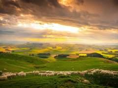 Cinco lugares de Nueva Zelanda que querrás visitar