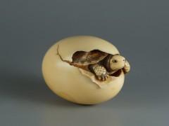 Tortuga saliendo del huevo, mediados siglo XIX