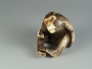 Mono, mediados del siglo XIX