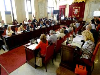 Pleno del Ayuntamiento de Málaga mayo segunda sesión