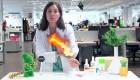 Boticaria García: cómo aliviar las picaduras de mosquitos
