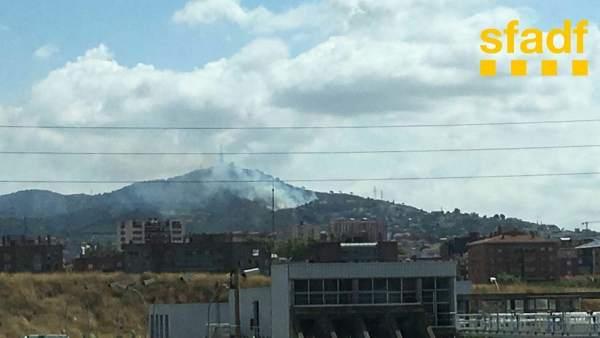 Incendio forestal en Esplugues de Llobregat