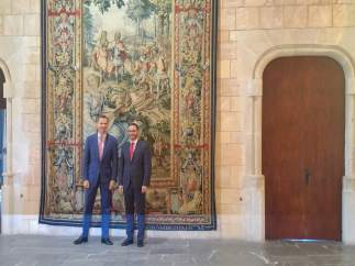 El Rey Felipe VI recibe al alcalde de Palma, José Hila