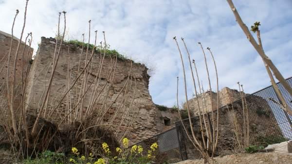 Obras En Las Murallas Del Albaicín