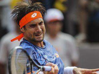 David Ferrer (Tenis)